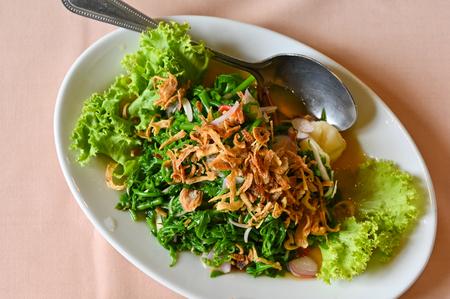 Edible fern (Phak Kut) spicy salad, southern style, Thailand Stock Photo