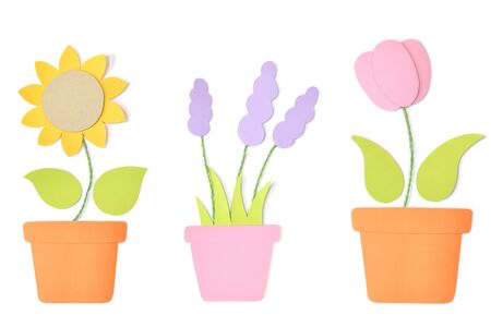 Flower in a pot paper cut on white background - isolated