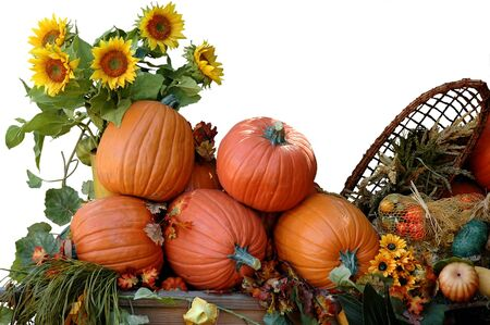 Pumpkins, sunflowers and other vegetables for  harvest