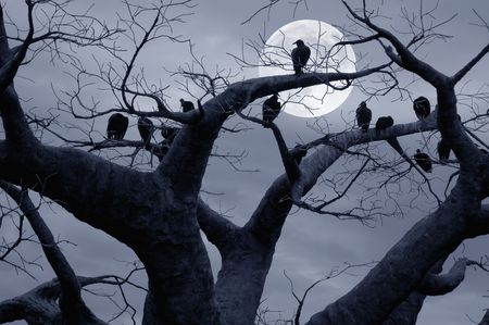Vultures in a scary and spooky halloween scene. Stock Photo