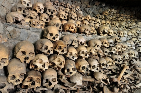 Skulls and bones in a cave