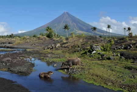 Mount Mayon Volcano in the province of Bicol, Philippines Stock Photo