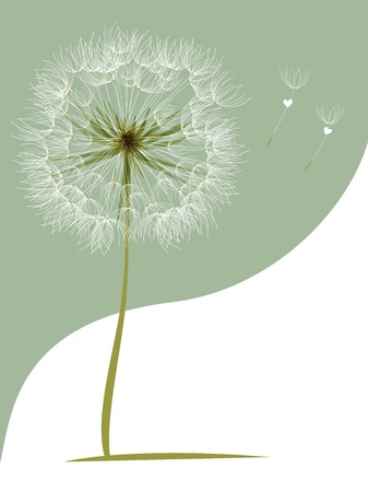 flower, garden, graphic Vector