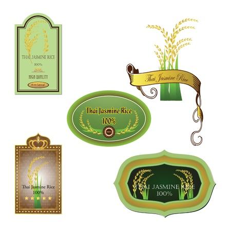 arrozal: el arroz, el tailand�s, Tailandia, blanco, ilustraci�n, Arroz Jazm�n Vectores