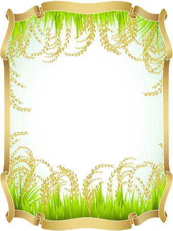 Frame and background of Thai white rice. Vector