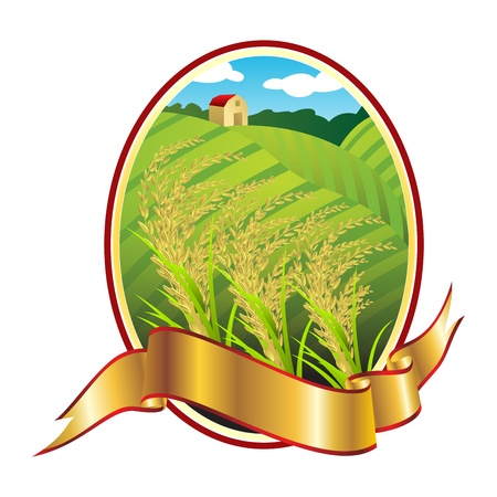 arrozal: Emblema de arroz de Tailandia, el arroz blanco tailand�s