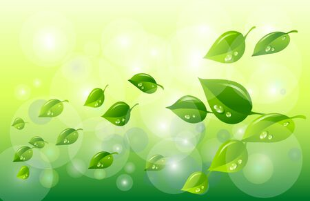 mint leaves: Green and Spring background