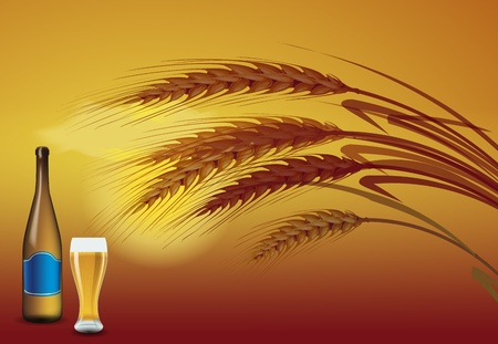 Barley grains at the sunset on the back. In front of a beer bottle and a glass of beer Vector
