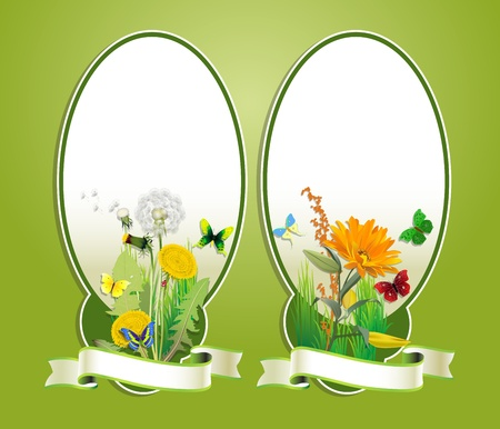 floral background with fresh flower and butterfly Vector