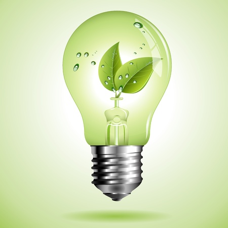 Green eco lightbulb with Green leaf with water droplets Vector