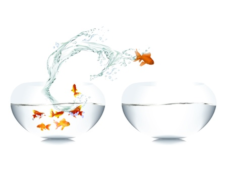 goldfish leaping out of water Stock Vector - 12476829