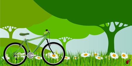green bicycle with green grass and green tree Vector