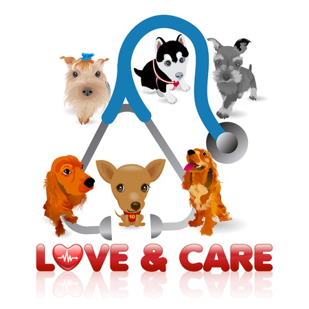 illustration of different dog breeds and Stethoscope Illustration