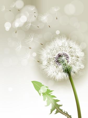flimsy: Vector Dandelion