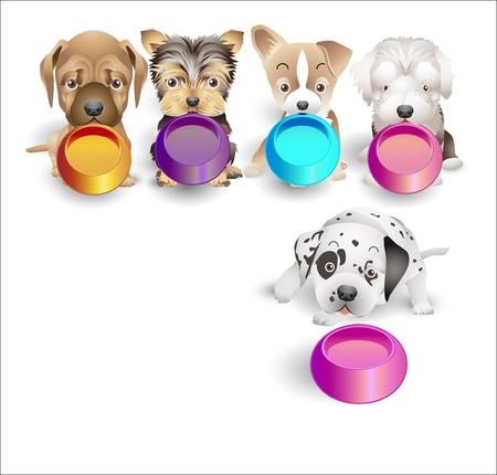 perro familia: Los cachorros son como alimento por las bandejas