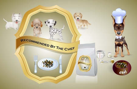 dog chef recommended dog food to puppies