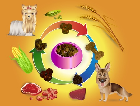 illustration of food in bowls and pet feed ingredients for a dog Illustration