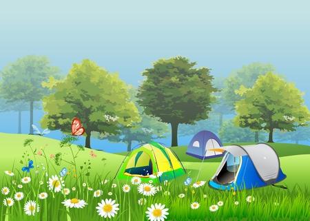 Tente dans le jardin avec des fleurs, et la brume