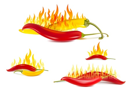 hot pepper: yellow and red hot chili pepper Illustration