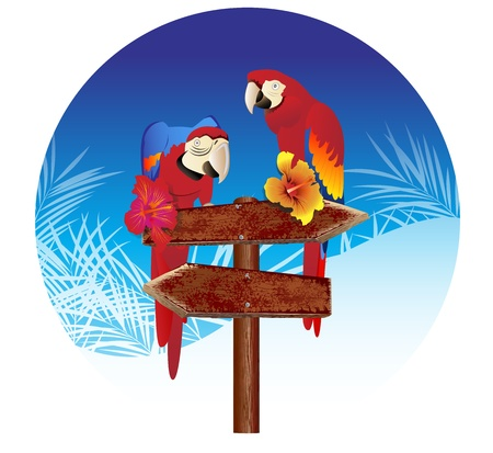 two parrots on The signs Illustrations Vector