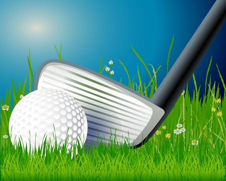Golf club and ball in grass Stock Vector - 13496661