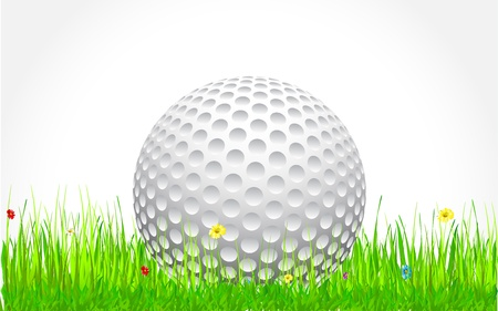 golf ball sitting in the grass with flower Stock Vector - 13496668