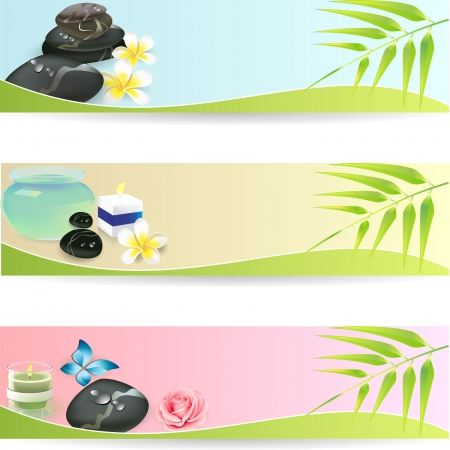 massage stones: Stone Spa Frangipani banner set
