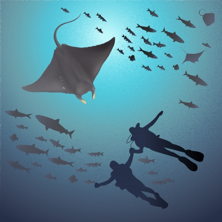 great barrier reef: llustration of Manta Ray and Divers under the sea