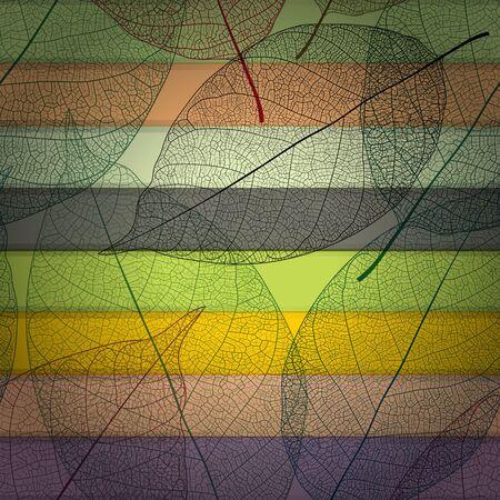 doku: renkli arka plan ile şeffaf yaprak