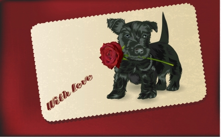 puppy dog holding red rose in its mouth vintage style Vector