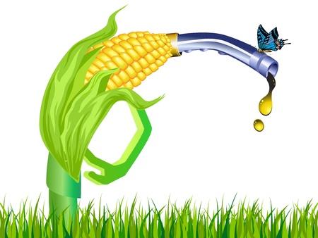 biomasa: tallo de etanol de maíz bomba de gas con la mariposa en el fondo blanco