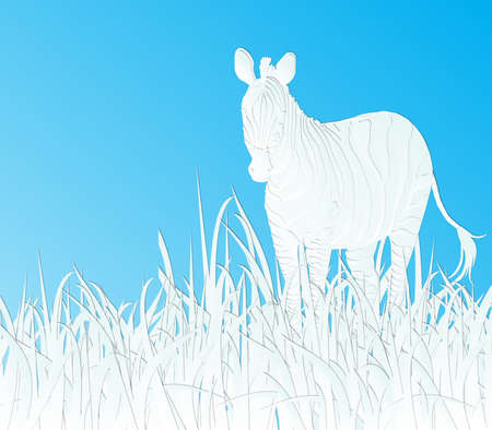 zebra face: paper cut design zebra with grass on sky blue background