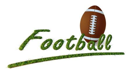 isolated headline Grass Text Football and ball Stock Vector - 15029340