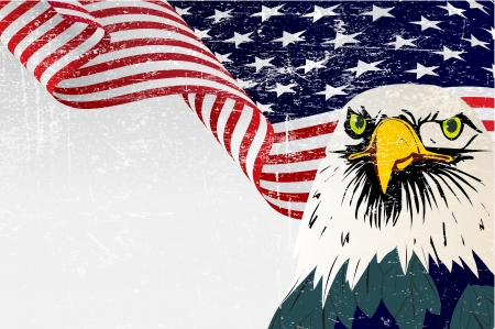 kel: Grunge etkisi ile kartal ile Amerika bayrak