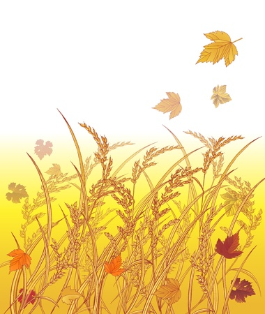 barley field: Autumn with rice and Leaves blackground Illustration