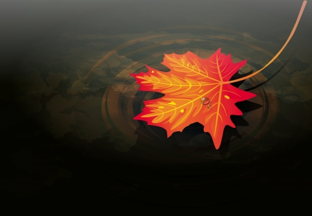 illustration of autumn maple leaf on water