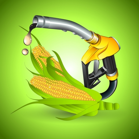 concepto de combustible a partir del maíz bio Vectores