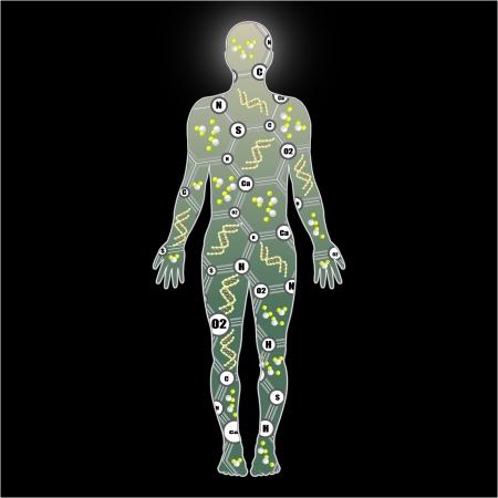 cromosoma: Modelo abstracto del hombre de la molécula de ADN