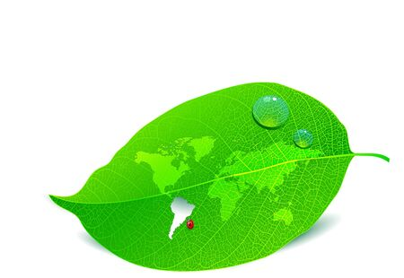 Close up view of a leaf with the world map cut out Ilustração