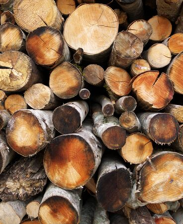 woodshed: Frontal view of firewood stacked in a woodshed for winter heating  Stock Photo