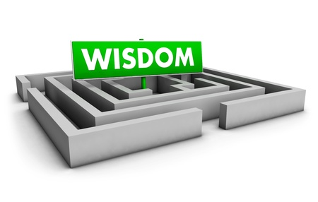 Wisdom concept with labyrinth and green goal sign on white background  photo