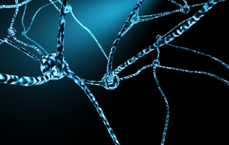 neuronal: Human neurons 3d concept illustration of nervous system stucture with nerve cells and neuronal networks