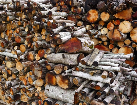 crosscut: Firewood stacked in a woodshed for winter heating