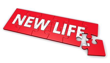 new life: New life puzzle development lifestyle concept 3d illustration.