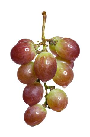 Bunch of fresh grapes, isolated on a white background  Stock Photo - 14630020