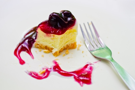 A delicious piece of blueberry cheese cake. Placed on a white plate. photo