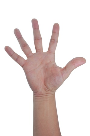 Five fingers palm of hand,  Isolated on a white background. Stock Photo - 15327571