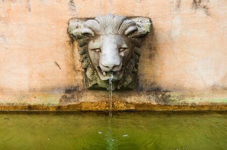 Close up on stone lion head pouring water photo
