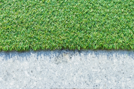 The artificial grass. For background and texture.