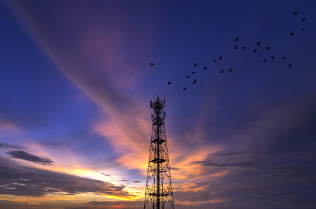 Silhouettes Telecommunication tower evening sky beautiful birds flying. photo